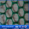 Rete metallica piana di plastica del foro esagonale di colore verde