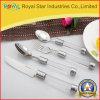 Vaisselle réglée de qualité d'acier inoxydable de couverts en plastique neufs de traitement (RYST0226C)