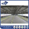 Il pollame prefabbricato della costruzione della struttura d'acciaio della Cina alloggia la Camera dell'azienda agricola di pollo