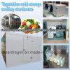 Gemüse-Kaltlagerungs-abkühlendes Lagerhaus