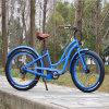 전기 뚱뚱한 자전거 뚱뚱한 전기 자전거 Ebike Rseb506