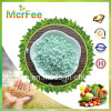 Fertilizzante del solfato ferroso della fabbrica per agricoltura