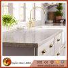 Популярный Countertop камня кварца конструкции для кухни/гостиницы/рекламы