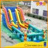 熱いSale Tropical Theme Obstacle Course (aq1486)