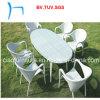 F-レストランの庭の柳細工の屋外の家具(Gz-1883-2+GS-1883-2)