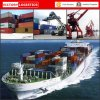Agente de transporte carga de China, mar (LCL, FCL), logística