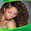 Trama brasileira do cabelo humano de Remy do Virgin novo do estilo 2016