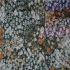 Baumwollspitze-Gewebe-/Cotton-Spitze-/Cotton-Gewebe