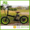 Lcd-Panel Ebike 36V 250W elektrisches Fahrrad faltend