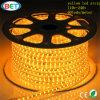 Corda ambarina amarela 5050 60LED 120LED da luz de tira do diodo emissor de luz da laranja