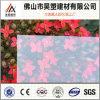 La fábrica de China dirige la hoja sólida del policarbonato claro de 1m m para la cubierta del material para techos