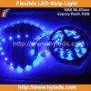 Nastro blu dell'indicatore luminoso della flessione SMD 5050 LED di colore