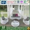 La mobilia esterna si distende il sofà di vimini del giardino (TG-010)
