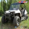 vehículo utilitario de 150cc UTV 4X4 para Sale