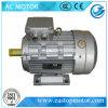 Frau Three Phase WS Electric Motor für Machines mit ISO (MS631-2)