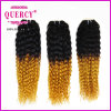 Deep malese Curly Virgin Hair Cheap Grade 8A Malaysian Curly Human Hair Two Tone Omber Remy Hair #T1b/144 Hair