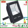 공장 Whole Sale 50W SMD5730 SMD3030 LED Flood Light