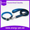 中国普及した顧客用安い専門の反射犬の鎖