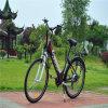 bicicleta elétrica escondida 10ah da estrada da bateria de 36V 250W para a senhora