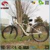 中国の安い250W電気マウンテンバイクLCDの表示のスポーツMTBの自転車