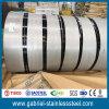 Warm gewalztes 6.0mm AISI 304 Nr. 1 Edelstahl-Blatt/Ring
