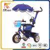 우산을%s 가진 Trike가 2016년 Hebei Pingxiang 세발자전거 제조자에 의하여 농담을 한다