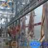 Vieh-Schlachthof-Geräten-obenliegende übermittelnschiene