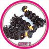バージンのインドのRemyの毛の織り方
