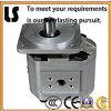 Bestes Quality Hydraulic Oil Gear Pump für Sale