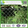 주거 체인 연결 Fence/Chain 링크 담 문 디자인