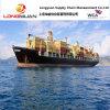 Overzeese van de Dienst van de logistiek Vracht (Shanghai aan MATSAPHA, Swasiland)