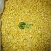 Vegetais congelados IQF novos do milho doce da colheita