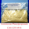 Testosteron Phenylpropionate CAS: 1255-49-8 Puder der Prüfungs-pp.