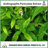 Extrait d'Andrographis Paniculata d'approvisionnement d'usine avec la CHROMATOGRAPHIE LIQUIDE SOUS HAUTE PRESSION d'Andrographolide 5-95%