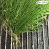 Tappeto erboso artificiale sintetico dell'erba di gioco del calcio (TenCate MSTT-50)