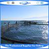 Camps de mer de HDPE (20130616_105021)