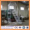 Neuer Art-Oberseiten-Verkaufs-Lager-Stahl-faltende Jobstepp-Strichleitern