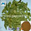 Выдержка листьев сенны порошка высокого качества 8% Sennoside