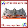 Мотор Stator и Rotor Progressive Die