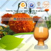 Lutein UV natural do extrato 20% do Marigold de 100%