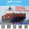 Expédition de fret maritime de Chine vers Singapour porte-à-porte
