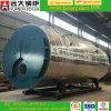 Caldaia a vapore del gas di assicurazione 6ton di commercio del tubo di fuoco di pressione bassa di prezzi di fabbrica