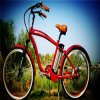 Bicicleta eléctrica Rseb-1214 de la nueva playa barata