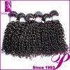 安いブラジルの毛の織り方の束、ねじれた巻き毛の組みひもの毛のよこ糸