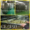 Venda dos secadores de gelo do alimento do aço inoxidável da capacidade