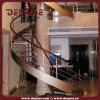 Escadaria espiral dos passos de madeira (DMS-1020)