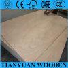 (precio bajo) Poplar/Bintangor/Okoume/Teak/Birch/Oak Faced Commercial Plywood para Furniture