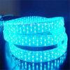 5本のワイヤーCE&RoHSの平らな青LEDロープライト
