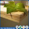 Triplex 18mm van de Eucalyptus van Okoume van de Rang van het meubilair