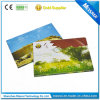 Helles Sensor LCD Video Greeting Card mit Inside Page